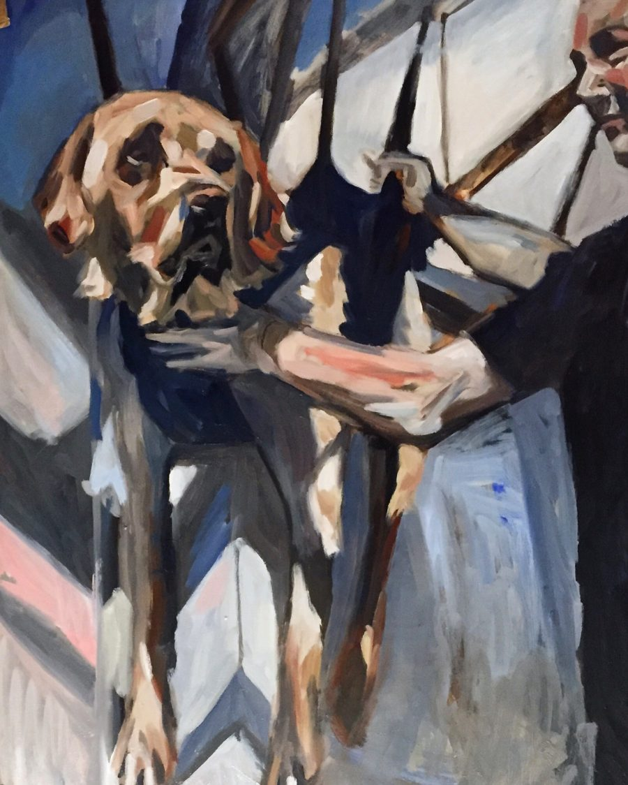 10-3pm-thursday-dog-at-hydrotherapy-oil-on-board-123x94cm-2800-2016