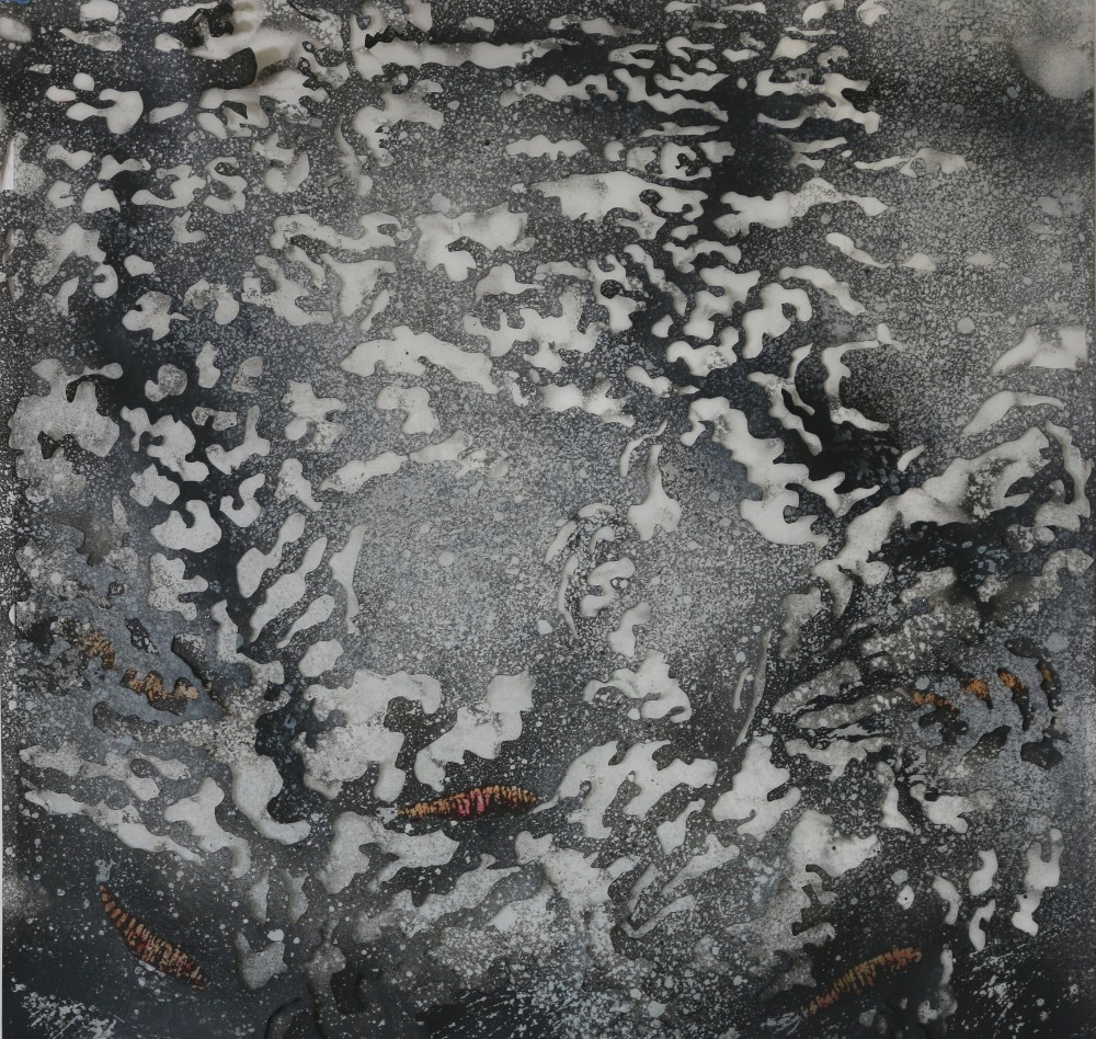 3. The Lily Pond III 49 x 49 cm - $2000 – Ink and enamel on polyester