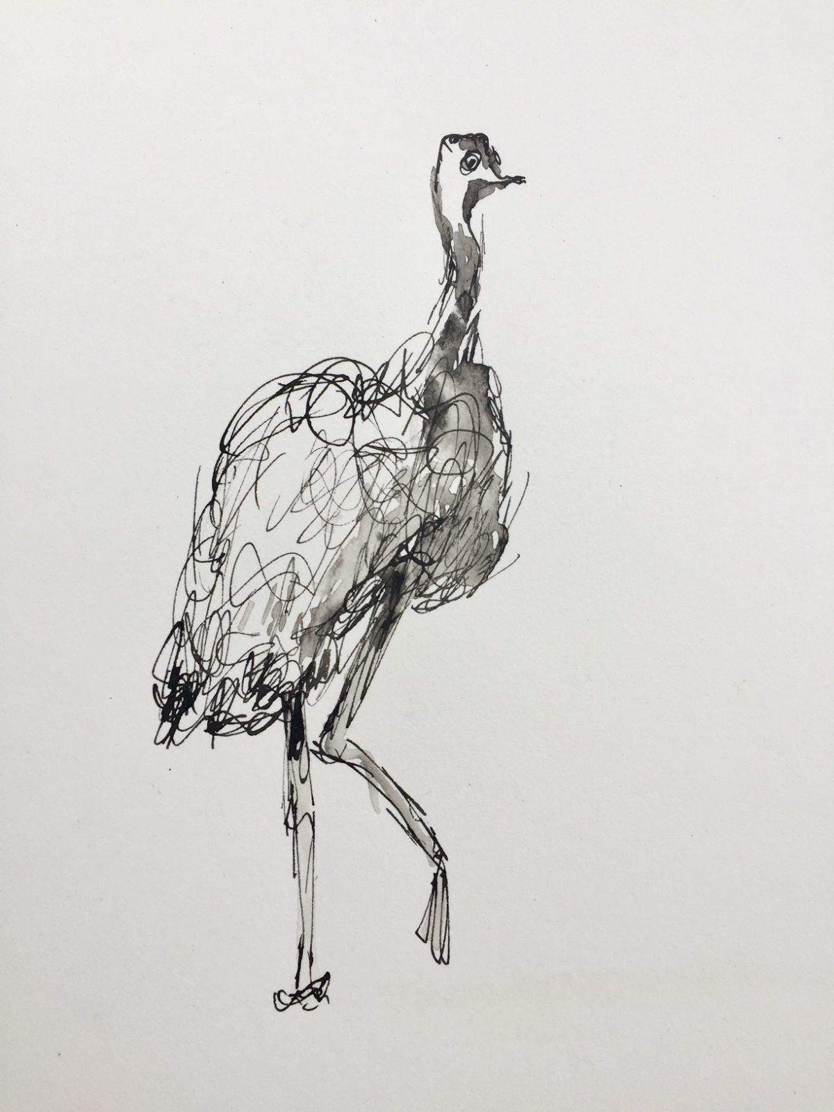 Art Atrium Patrick Shirvington - Emu study 2