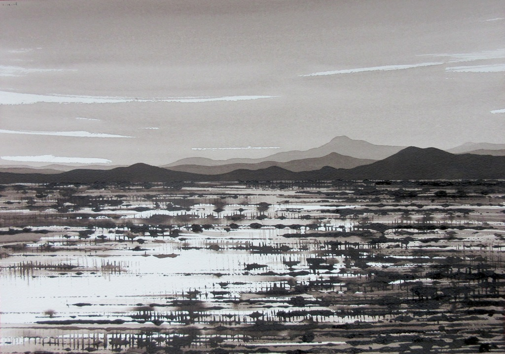 Desert Plain; ink on paper,30x42cm