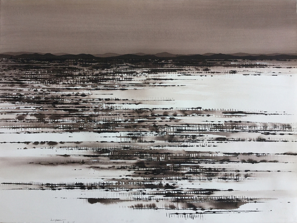 Salt Lake and Field near Tibooburra; ink on paper, 58x76cm