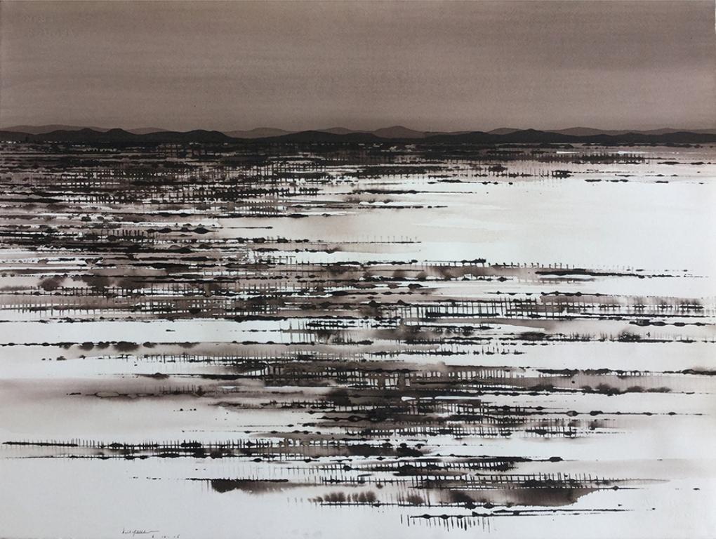 Salt Lake and Field near Tibooburra; ink on paper, 58x76cm