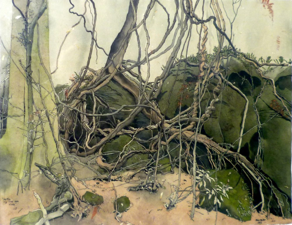 5.Max Miler Native Fig Tree & Vines 1993 Watercolour Framed 76 x 89 cm
