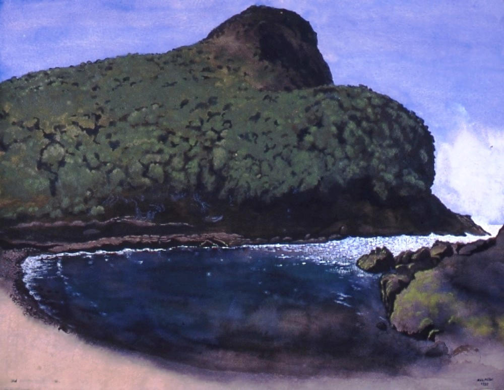 8. Max Miller Old Golch - Lord Howe Island 1995