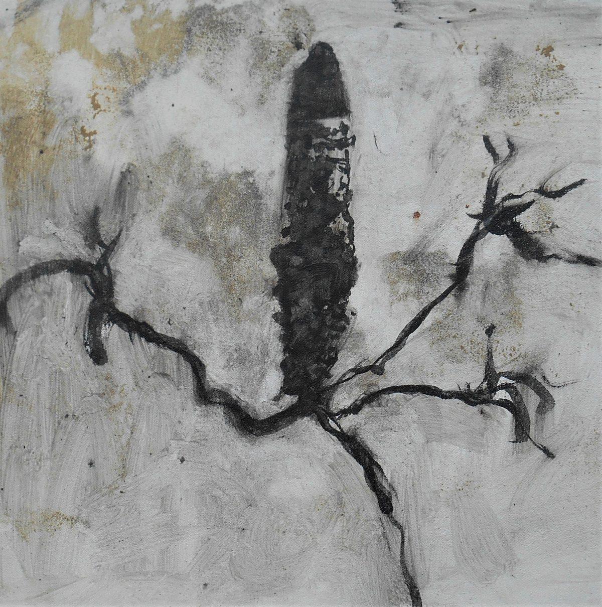 Banksia dance