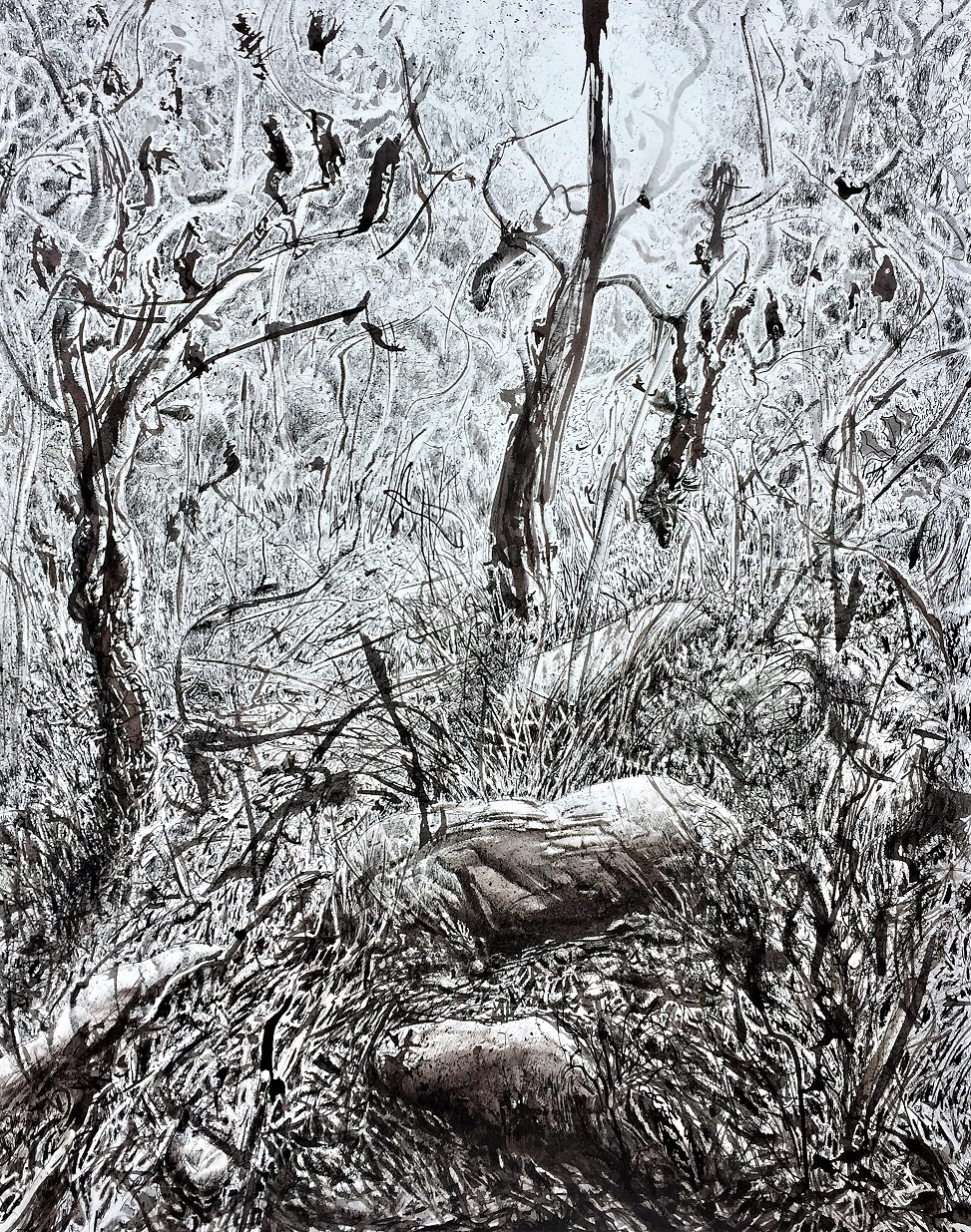 Art Atrium Patrick Shirvington Banksia morning