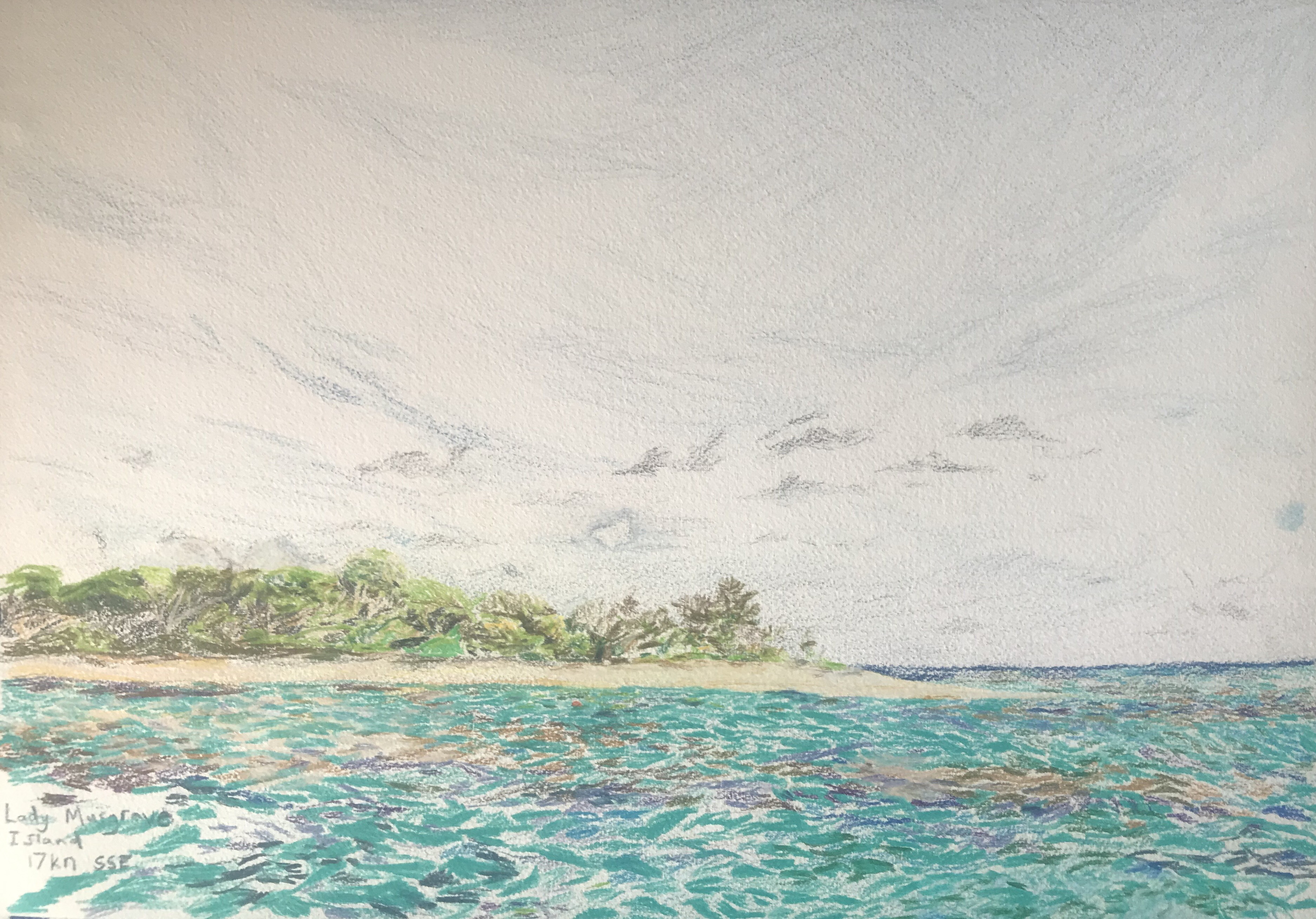 John Murray-lady Musgrave island. 30 by 42cm, pencil on paper, $1500