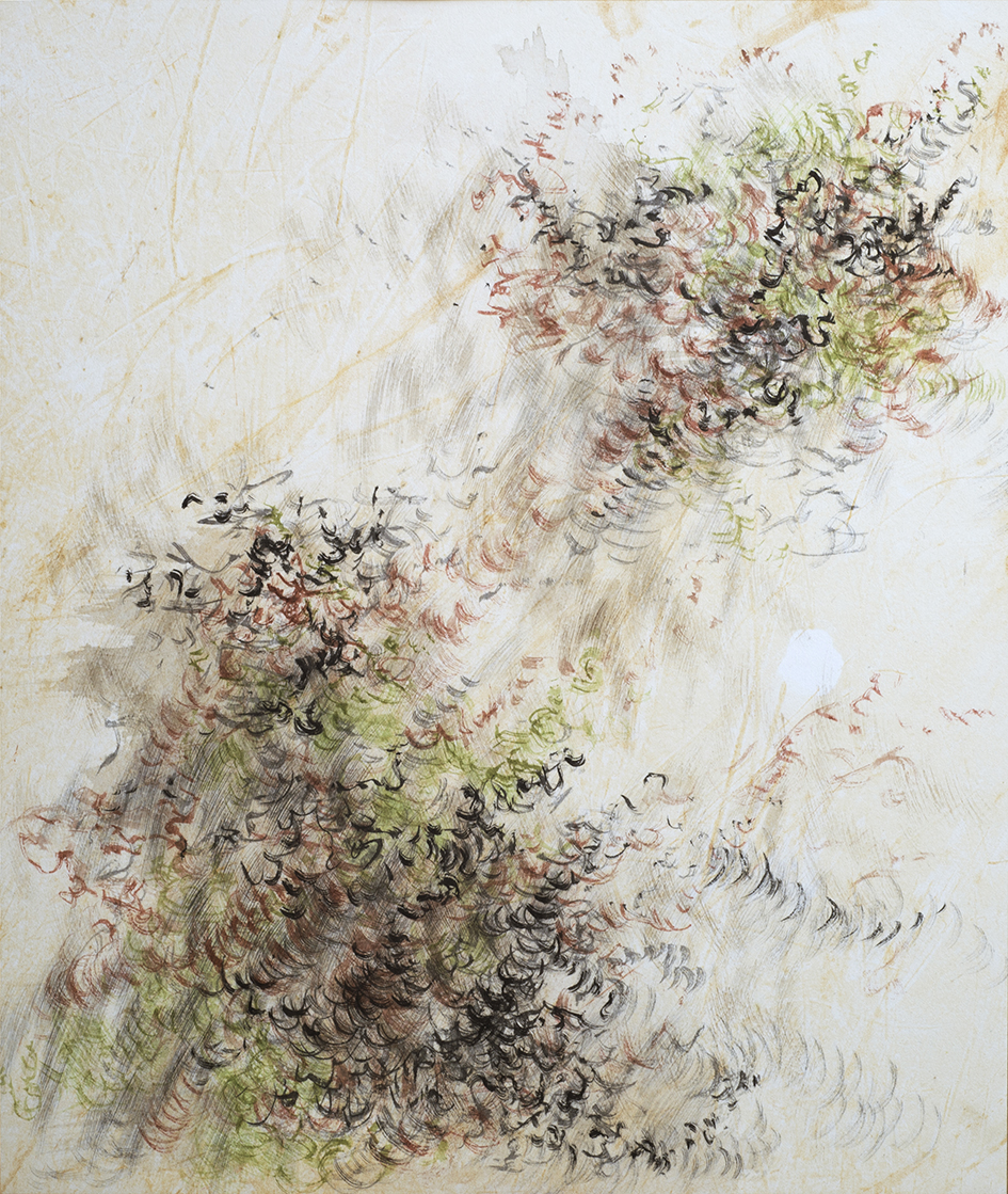 Art Atrium - Cindy Chen - 'Golden Gully Study', 2017, H37x W31cm, Japanese ink and watercolour on Wenzhou paper, $750