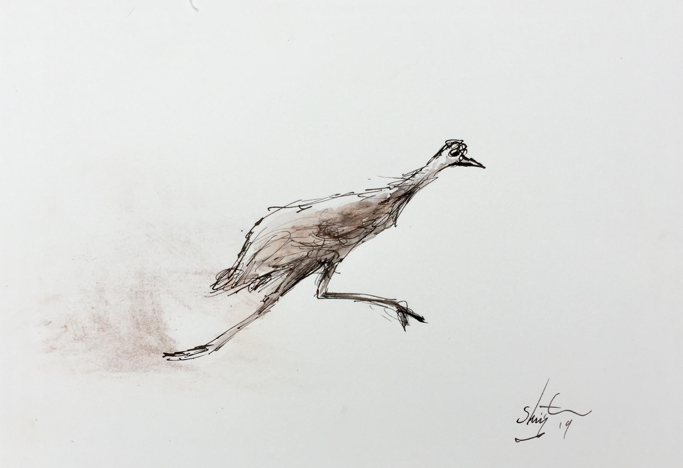 Art Atrium Patrick Shirvington - Emu study 4