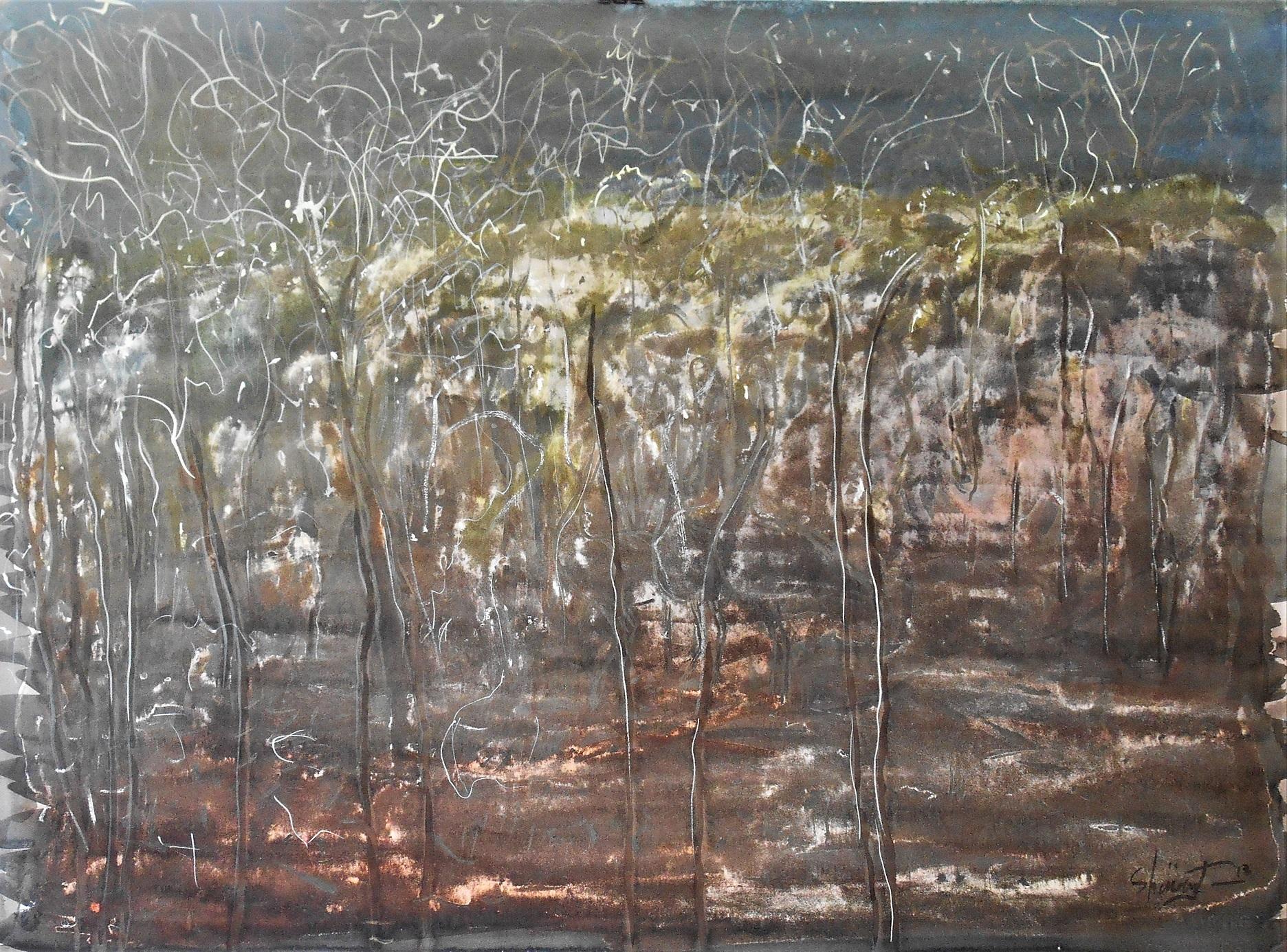 Art Atrium Patrick Shirvington - Last light Gundabooka