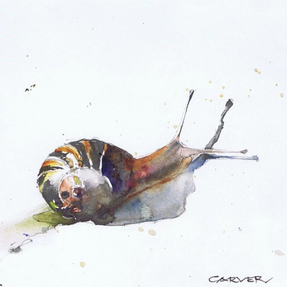 57-escargot-kos-greece