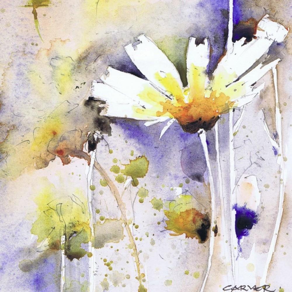 58-wild-daisies-nisyros