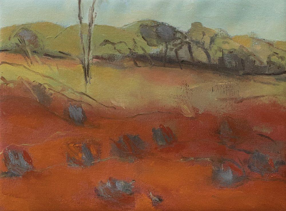 janis-lander-winter-in-the-arid-zone-oil-on-canvas-63-cm-x-47-cm-2500