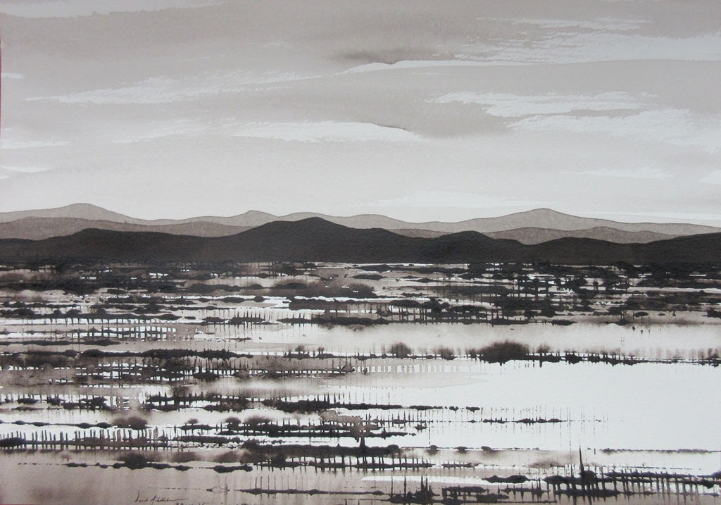 Lakebed, Spinifex and Mountain;ink on paper,30x40cm