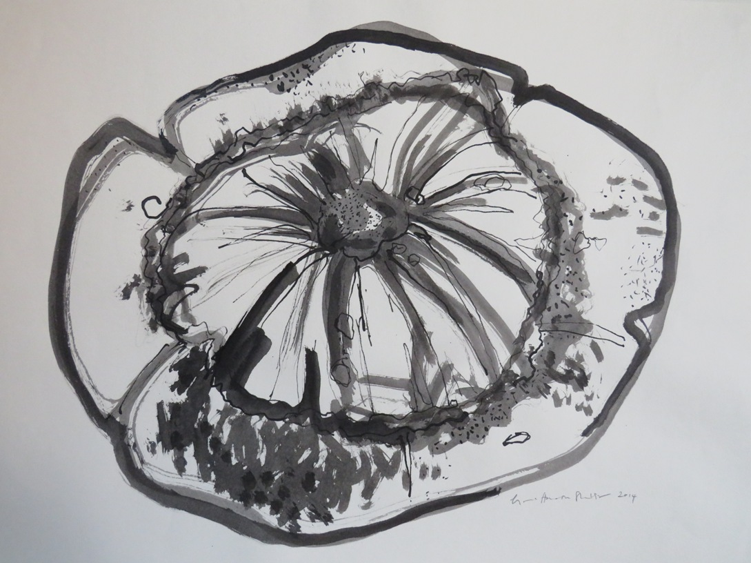 Art Atrium - Lynne Howarth-Gladston Gourd 3 low res