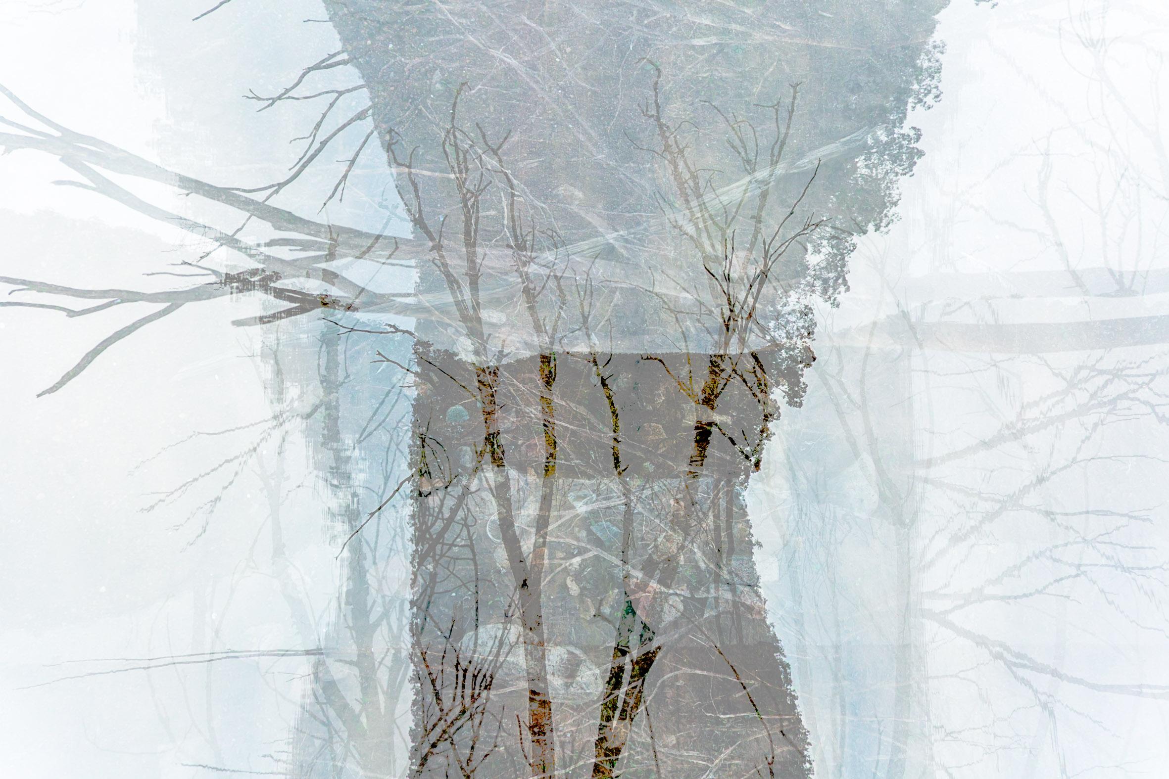 Art Atrium Asher Milgate - Damned - Untitled 3