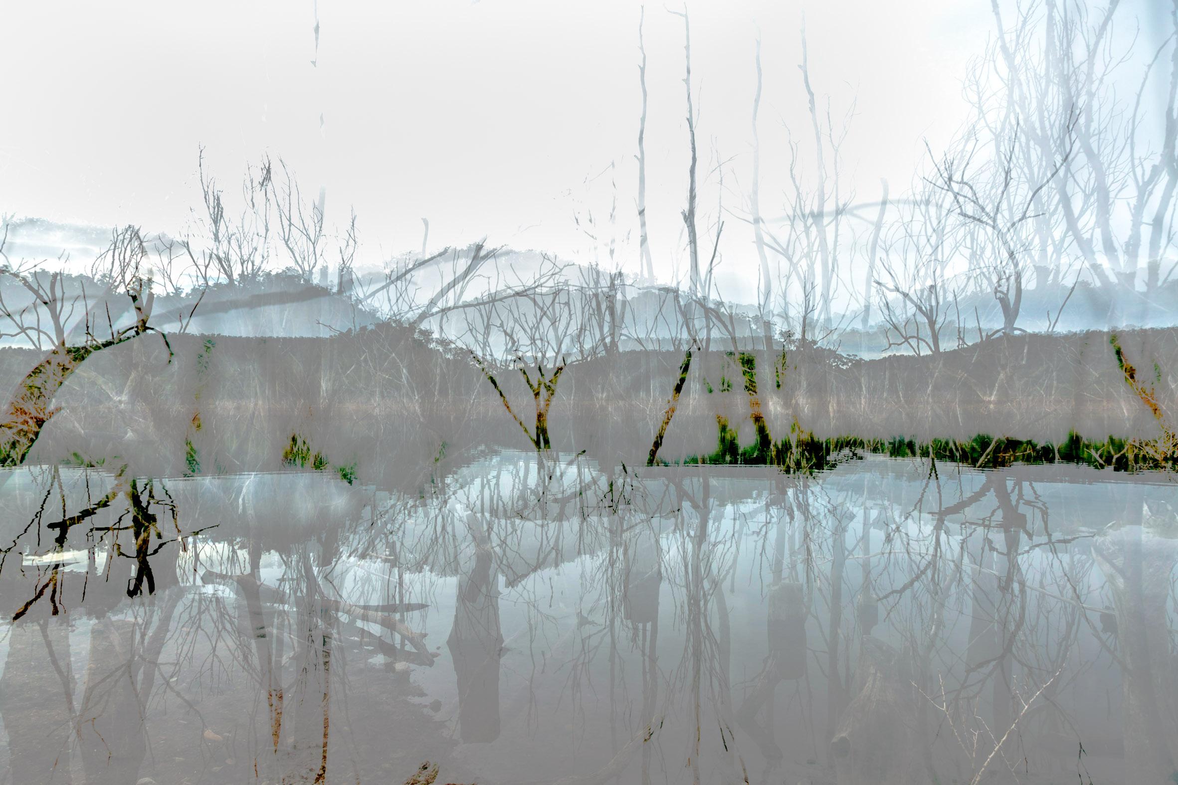 Art Atrium Asher Milgate - Damned - Untitled 4